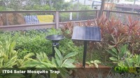 金牌滅蚊方法太陽能滅蚊機